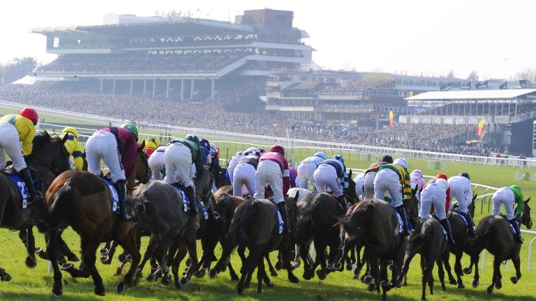 cheltenham-racecourse-copy-2